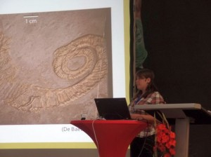 Student presenting at the German Palaeontological Society meeting in Dresden, 2016
