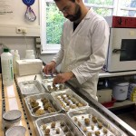 Fossil preparation for isotope analyses